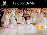 Le Chat Défile -  - Oise (Beauvais)